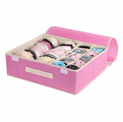 10 Grids Foldable Organiser/Box for Underwear, Bras, Socks, Pink