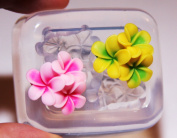 Clear-silicone flowers mould.Flowers 40mm,good for pendant,stud earrings,bracelet,art,craft.