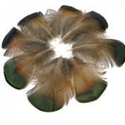 10PCS Pheasant Feather 5-10cm Clothings Decoration Green Accessories Lovely Chicken Plumage Decorative