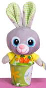 Veil Entertainment Easter Plush Bunny Pail 2pc Easter Basket Grey/Yellow/Green