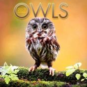 Cal 2017 Owls