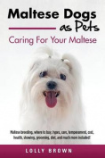 Maltese Dogs as Pets