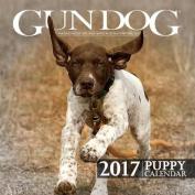 2017 Gun Dog Puppy Calendar