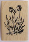 Nature's Blessings Fine Art Stamps, Small Tulips