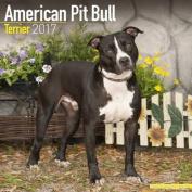American Pit Bull Terrier Calendar 2017