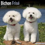 Bichon Frise Calendar 2017