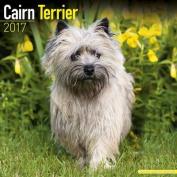 Cairn Terrier Calendar 2017