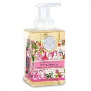 Fuchsia Foaming Hand Soap from FND Promotion by Michel Design Works