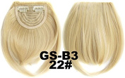 #22 100% High Temperature Synthetic Fibre Clip In/On Front Hair Fringe Hair Bangs