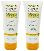 (2 PACK) - Andalou Sunflower & Citrus Medium Hold Styling Gel | 200ml | 2 PACK - SUPER SAVER - SAVE MONEY