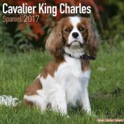 Cavalier King Charles Spaniel Calendar 2017