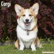 Corgi Calendar 2017