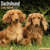 Dachshund (Longhaired) Calendar 2017