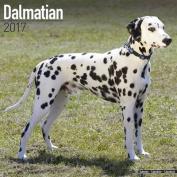 Dalmatian Calendar 2017
