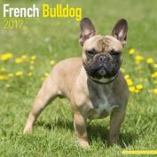 French Bulldog Calendar 2017