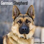 German Shepherd Calendar 2017