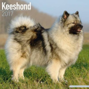 Keeshond Calendar 2017