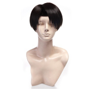Yesui Attack on Titan Levi Rivaille Rival Cosplay Wig Anime Synthetic Lace Front Wigs Heat Resistant Cosplay Black Wig 30cm Straight Hair Short