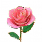 Holidayli Valentine's Day Rose Love Forever Dipped In Gold Best Gifts For Mother's Day Anniversary Birthday