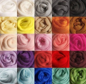 DOD-LIFE 36 colours Merino Wool Fibre Roving For Needle Felting Hand Spinning BIN,5g/colour, TOTAL 180g