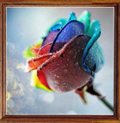 OneHippo 5D Full Drilled Square Needlework Diy Diamond Painting Cross Stitch Square Diamond Emboridery Colourful Rose (40x40)CM
