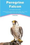 Peregrine Falcon the Peregrine Falcon Guide Peregrine Falcon Guide Includes