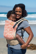 Tula Ergonomic Carrier - Solana - Toddler