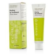 Healing Lip Treatment, 15ml/0.5oz
