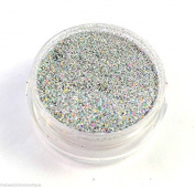 Glitter Pot - GH2 Holographic Diamond Silver Glitter Eye Eye shadow Nail Art Face And Body