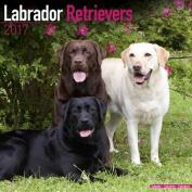 Labrador Retrievers Calendar 2017