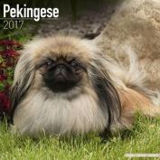 Pekingese Calendar 2017