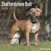 Staffordshire Bull Terrier Calendar 2017
