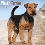 Welsh Terrier Calendar 2017