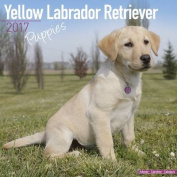 Yellow Labrador Retriever Puppies Calendar 2017