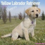 Yellow Labrador Retriever Puppies Calendar 2017