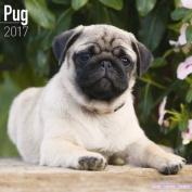 Pug Calendar 2017