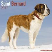 Saint Bernard Calendar 2017