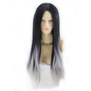 RightOn Hot Fashion Women Girls Black and Silver Grey Gradient Ramp Sexy Long Straight Wig Cosplay Costume Party Wig with Free Wig Cap and Comb