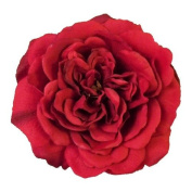 Sophia Rose Artificial Flower Hair Clip/Pin Brooch
