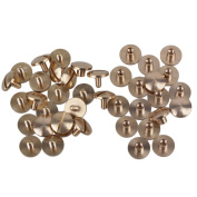 20pcs Cambered Button Chicago Binding Nail Stud Screwback Leather Rivet Belt End
