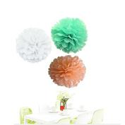 Since . 12Pcs of 20cm 25cm Colours White Mint Peach Tissue Paper Flowers, Tissue Paper Pom Poms, Wedding Decor, Party Decor, Pom Pom Flowers, Tissue Paper, Tissue Paper Flowers Kit, Pom Poms Craft, Wedding Pom Poms, Pom Poms Decoration