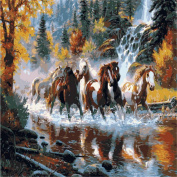 KINGSO DIY Oil Painting Paint By Numbers Kit Art Craft Horses 40*50cm