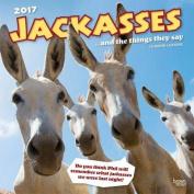 Jackasses 2017 Square