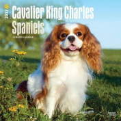 Cavalier King Charles Spaniels 2017 Square