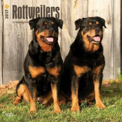 Rottweilers 2017 Square