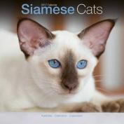 Siamese Cats Calendar 2017