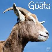 Goats Calendar 2017