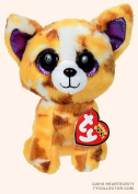 "New TY Beanie Boos Cute Pablo the Chihuahua Plush Toys 6"" 15cm Ty Plush Animals Big Eyes Eyed Stuffed Animal Soft Toys for Kids Gifts"