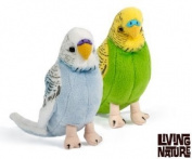 Pair of Budgies, Budgerigars by Living Nature. 1 Blue and 1 Green. 14cm. AN394