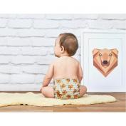 Bambino Mio Miosolo All In One Nappy Premium Birth To Potty Pack